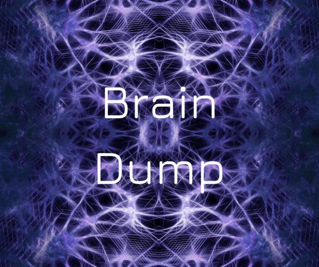 new brain dump
